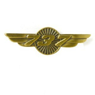boeing-737-wings-pin
