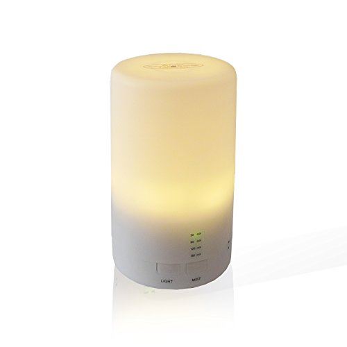 PROINTxp® Portable Ultrasonic Essential Oil Diffuser Cool Mist with LED Warm Light USB Connect (100mL)