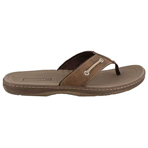 - Sperry Top-Sider Havasu Flip Flop Men 11 Brown