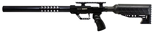 Big Bore Gamo Big Bore TC35 PCP Air Rifle