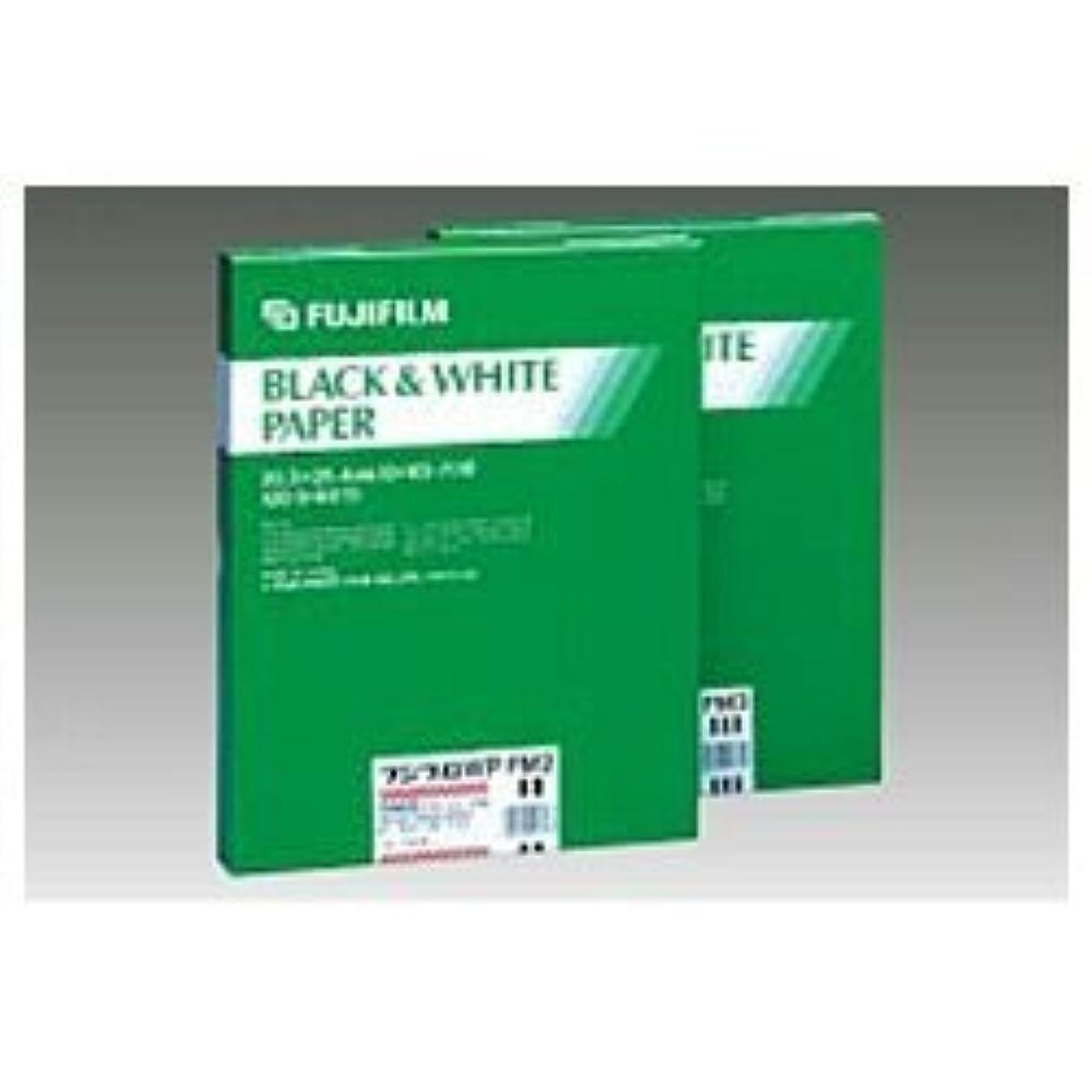 野ウサギ肺炎ドアILFORD 白黒印画紙 MGFB CLASSIC 1K 8X10 六切 25枚 1171972