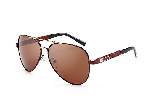 SZLINGKE Brand Man Polarized Discoloration Photochromic Pilot Aviator Night Vision Metal Sunglasses (Tea & - Brands Aviator Sunglasses
