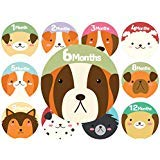 Baby Monthly Stickers | Dog Baby Stickers | Babys First Year 12 Monthly Milestone Stickers Plus 12 Holiday and Special Occasion Stickers -