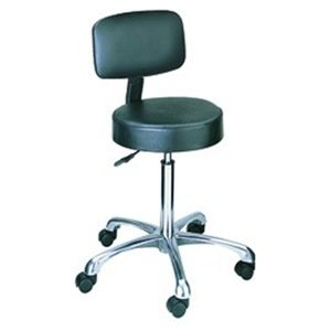 Exceptional Height Adjustable Lab Stool With Casters Back: Included