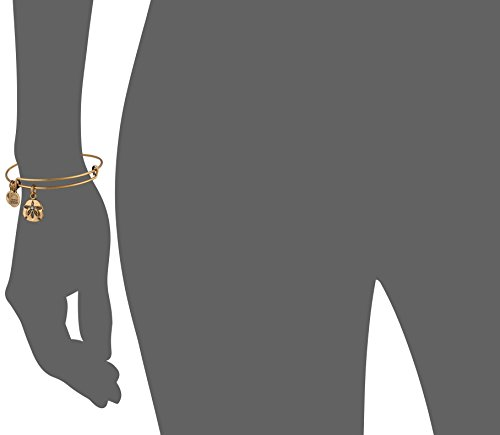Alex and Ani Sand Dollar III Rafaelian Gold Bangle Bracelet by Alex and Ani (Image #2)'