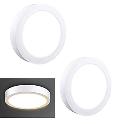 DLLT LED Flush Mount Ceiling Light Surface Mounted Panel Ceiling Light Fixture Clost to Ceiling Lights 6/12/18/24W