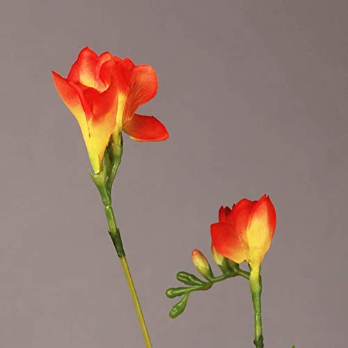 6 Pcs/Lot Artificial Flowers Freesia Orchid Silk Fake Flowers ()