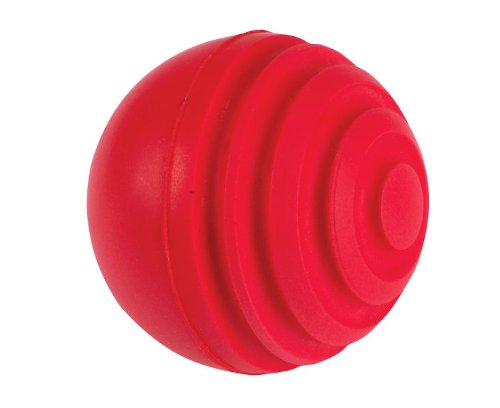 (GRAY-NICOLLS Wobbleball Cricket Ball , One Size)