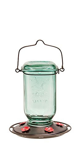 More Birds Hummingbird Feeder with 6 Feeding Stations, Glass Mason Jar Hummingbird Feeder, 25-Ounce Hummingbird Nectar Capacity Mason Jar Base
