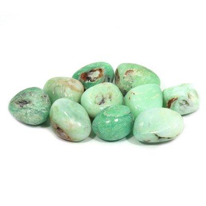 Chrysoprase Tumble Stone (20-25mm) - 5 Pack