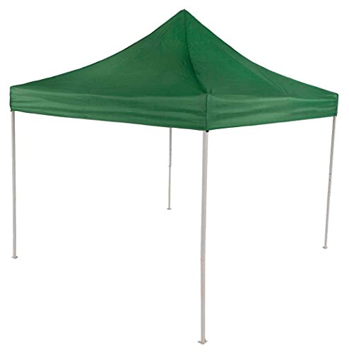 Impact Canopy 10x10 Canopy Tent Impact Canopies Easy Pop ...