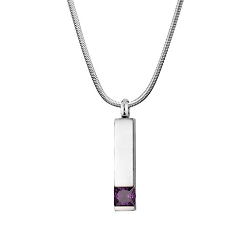 Anavia Engravable Birthstone Bar Cremation Jewelry Memorial Necklace Urn Ashes Holder Stainless Steel Pendant (Feb - Amethyst)