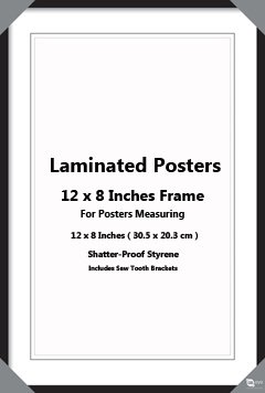 Black Wooden 12 X 8 Inches 305 X 203 Cm Poster Picture Frame