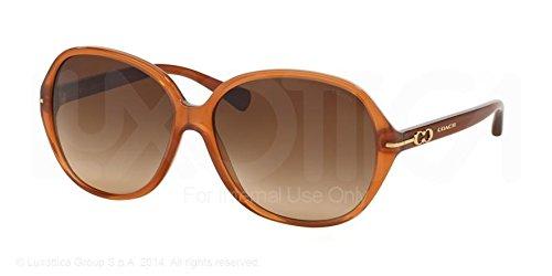 Coach L089 Bailey Sunglasses HC8118 525113 Milky Saddle Brown Gradient 60 14 - Bailey Eyewear