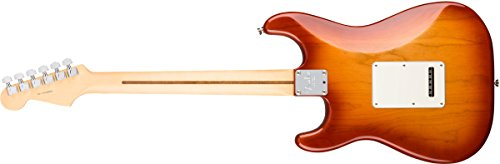 Price comparison product image Fender American Professional Stratocaster - Sienna Sunburst w / Rosewood Fingerboard
