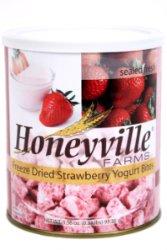 Freeze Dried Strawberry Yogurt Bites - 3.4 Ounce Can