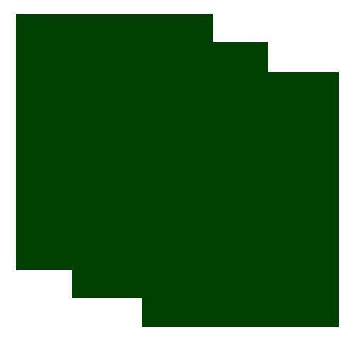 SISER EasyWeed Heat Transfer Vinyl HTV for T-Shirts 12 x 15 Inches 3 Precut Sheets (Dark (Dark Green Vinyl)