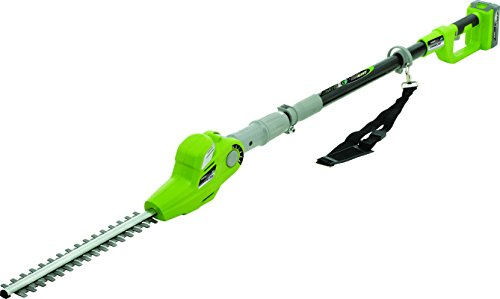 Earthwise LPHT12017 17-Inch 20-Volt Lithium Ion Cordless Pole Hedge Trimmer by Earthwise