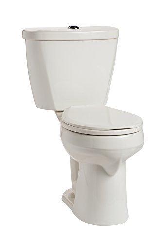 Mansfield Plumbing 388.3386.WHT Summit Dual Flush Toilet, White ()