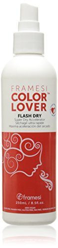 The 6 best framesi color lover flash dry 2020