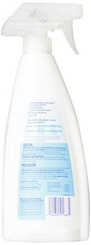 Clorox Anywhere Hard Surface Daily Sanitizing Spray, 22 Fluid Ounces (Pack of 9)