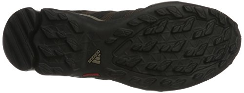 adidas Terrex Ax2R, Scarpe da Trail Running Uomo Marrone (Brown/Core Black/Night Brown)