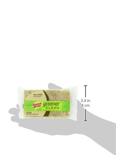 Scotch-Brite Greener Clean Sponge - size