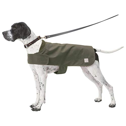 Shelter Dog Coat in Otter Green Size Small