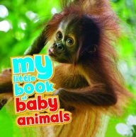My Little Book of Baby Animals PDF