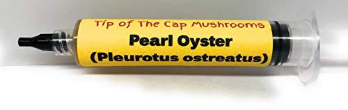 - Pearl Oyster Mushroom Liquid Culture