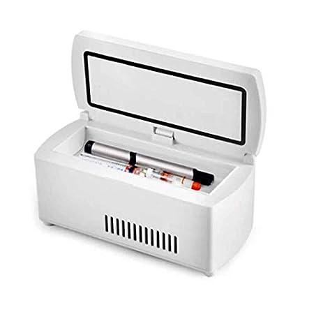 Mini Nevera Nevera Portátil Con Caja Refrigerada Con Temperatura ...