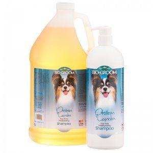 (Bg Lanolin Cond Shampoo 12oz)