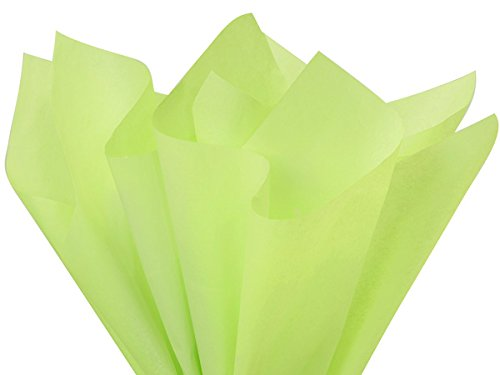 Pistachio Tissue Paper 20x26'' 480 Sheet Ream (2 Reams) - WRAPS-CT2PS by Miller Supply Inc