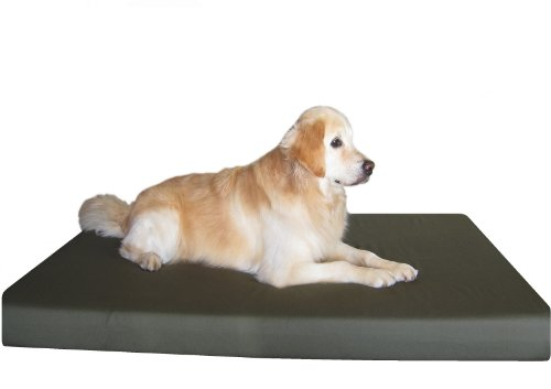 Dogbed4less 100% Memory Foam Dog Bed with Durable Washable C