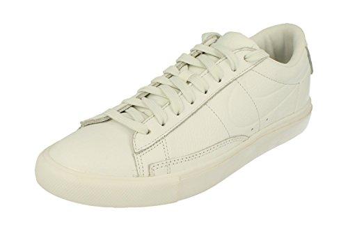 Nike Blazer Low Mens Trainers 371760 Sneakers Shoes (UK 8.5 US 9.5 EU 43, Summit White 109)