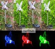 solar garden changing hummingbird lights