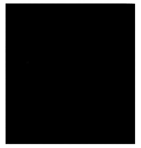 Oversize Big Solid Black Bandana]()