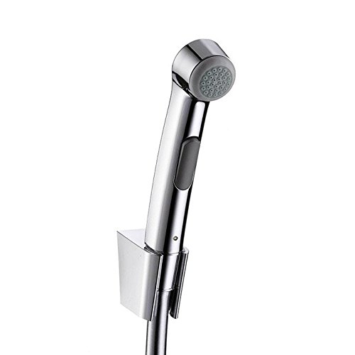 Hansgrohe Hand Shower  32129000_Silver  1.25 m Bidette DN15 with Shower Hose and Porter
