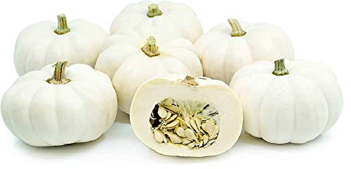 David's Garden Seeds Pumpkin Mini Casperita SL3076 (White) 25 Non-GMO, Hybrid Seeds (Seeds Roasting Pumpkin)