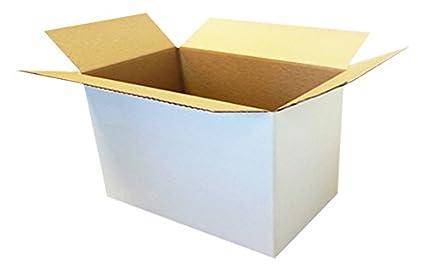 Caja de cartón Mono onda cm 31 x 22 x 25 conf. 10 unidades)