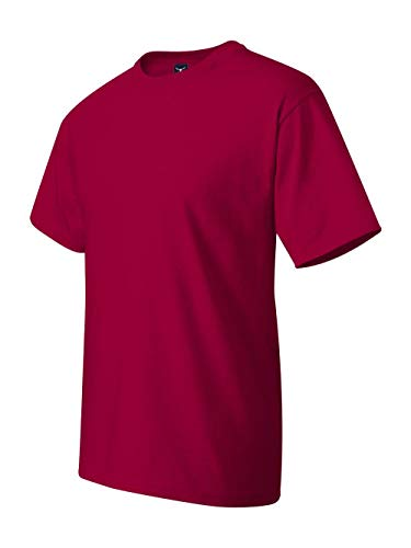 Hanes Beefy-T Adult Short-Sleeve T-Shirt (Chocolate Ash Grey T-shirt)