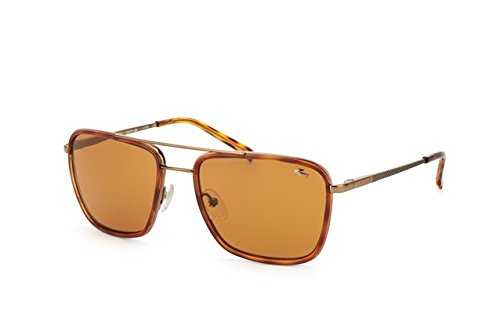 Lacoste Men's L143S Sunglasses, Brown, - Sunglass Lacoste