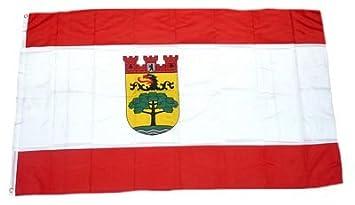 Fahne Flagge Berlin Steglitz Zehlendorf 90 X 150 Cm Amazonde