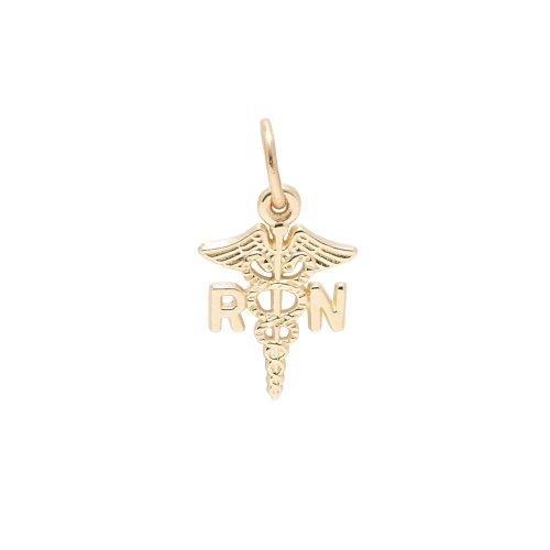 Rembrandt Charms, Registered Nurse, 14K  - 14k Gold Nurse Charm Shopping Results