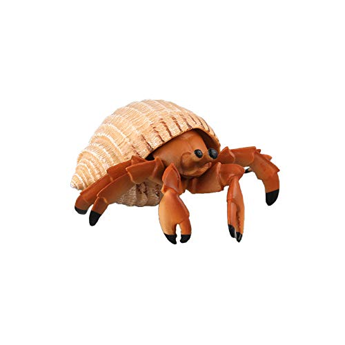 - Warmtree Simulated Sea Life Animals Figurines Realistic Plastic Model Ocean Animals Action Figure for Kids' Collection Science Educational Toy (Hermit Crab)