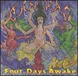 Four Days Awake