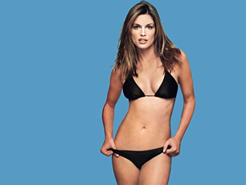 photo Cindy Crawford 8 x 10 Glossy Picture Image #8 (Cindy Crawford Photos)