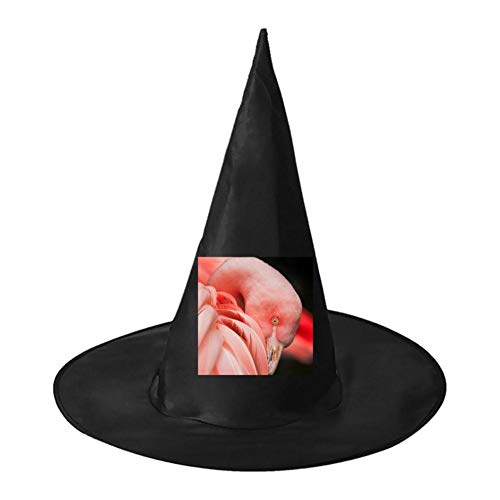 Flamingo Flamingos Unisex Halloween Witch Role Playing Wizard Hat for Costume -