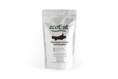 ecoEat Chocolate Covered Superworms