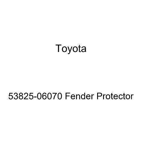 Toyota 53825-06070 Fender Protector